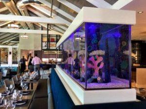 Fish tank in Summer House on Siesta Key